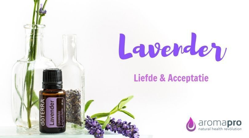 Lavender from doTERRA
